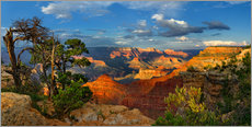 Sticker mural  Grand Canyon Idyll - Michael Rucker
