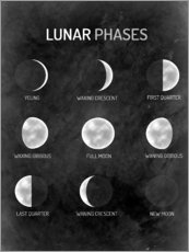 Sticker mural  Phases de la Lune (anglais) - Mandy Reinmuth