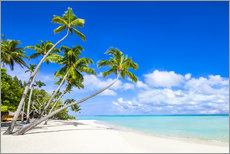 Sticker mural  White beach and palm trees in the tropics - Jan Christopher Becke