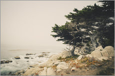 Tableau en plexi-alu  Carmel By The Sea - Pascal Deckarm