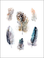 Sticker mural  Feathers collection - Verbrugge Watercolor