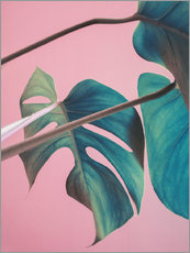 Sticker mural  Feuilles de monstera sur fond rose - Emanuela Carratoni