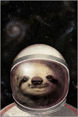 Sticker mural  Space Sloth Poster Lounge - Eric Fan