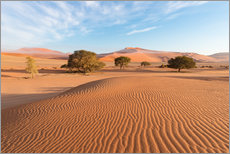 Sticker mural  Morning mist over sand dunes and Acacia trees at Sossusvlei, Namibia - Fabio Lamanna