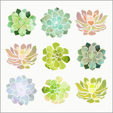 Sticker mural Printemps de plantes grasses