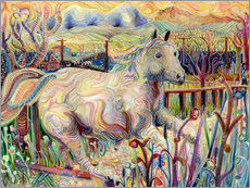Sticker mural  My Soul is an Escaped Horse - Josh Byer