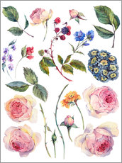 vintage watercolor roses