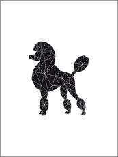 Sticker mural  Black Poodle - Nouveau Prints