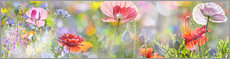 Sticker mural  Coquelicots couleurs pastel - Art Couture