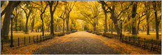 Poster  Central Park in New York City, USA - Jan Christopher Becke