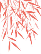 Poster  Bambous corail I