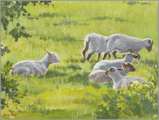 Poster  Petit troupeau de moutons en Angleterre - Mary Want