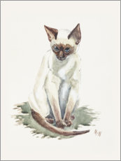 Poster Petit chat siamois, aquarelle