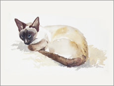 Poster Portrait de mon chat, aquarelle
