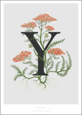 Poster  Y is for Yarrow - Charlotte Day