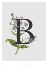 Tableau en aluminium  B is for Borage - Charlotte Day