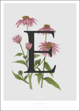 Tableau en verre acrylique  E is for Echinacea - Charlotte Day