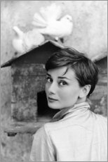 Tableau en bois  Audrey Hepburn au pigeonnier - Celebrity Collection