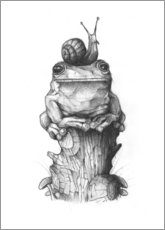 Poster  La grenouille et l'escargot - Mike Koubou
