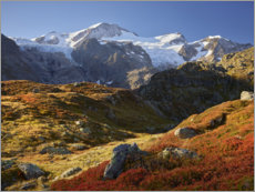 Poster Alpes automnales