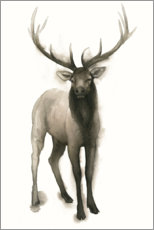 Poster  Cerf majestueux - Grace Popp