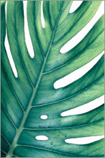 Poster  Monstera verte - Art Couture