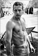 Poster  Paul Newman torse nu - Celebrity Collection