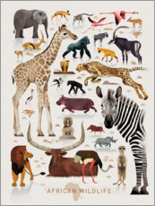 Poster La faune africaine (anglais)