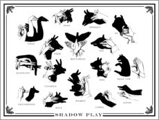 Sticker mural  Jeux d'ombres (anglais) - Wunderkammer Collection