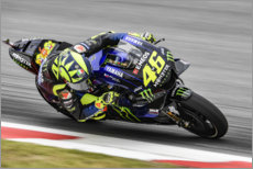 Poster Valentino Rossi, Yamaha Factory Racing, GP de Catalogne 2019