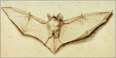 Tableau en plexi-alu  Bat with spread wings - Hans Holbein d.J.