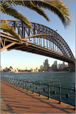 Sticker mural  Sydney Harbour Bridge - David Wall