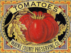 Sticker mural  Tomatoes