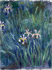 Sticker mural  Iris - Claude Monet