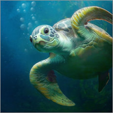 Sticker mural  Bubbles, the cute sea turtle - Photoplace Creative