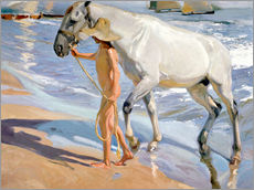 Sticker mural  Washing the Horse - Joaquin Sorolla y Bastida