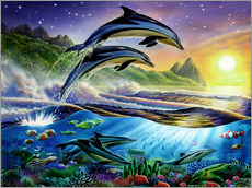 Sticker mural  Atlantic dolphins - Adrian Chesterman