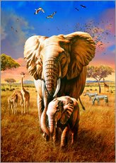 Tableau en plexi-alu  Elephants - Adrian Chesterman
