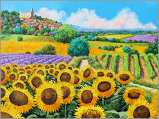 Sticker mural  Vineyards and sunflowers in Provence - Jean-Marc Janiaczyk