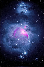 Sticker mural  Orion Nebula M 42 and Running Man Nebula - MonarchC