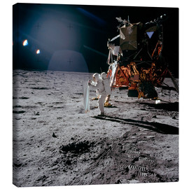 Stocktrek Images - Apollo 11 Moon Walk