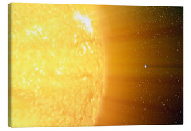 Tableau sur toile  The relative sizes of the Sun and the Earth - Stocktrek Images