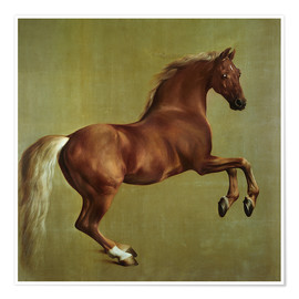 Poster Whistlejacket