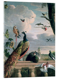 Verre acrylique  Palace of Amsterdam with Exotic Birds - Melchior de Hondecoeter