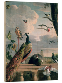 Bois  Palace of Amsterdam with Exotic Birds - Melchior de Hondecoeter