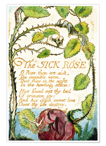 Poster The sick rose - poème