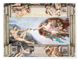 Poster  Sistine Chapel: The Creation of Adam - Michelangelo