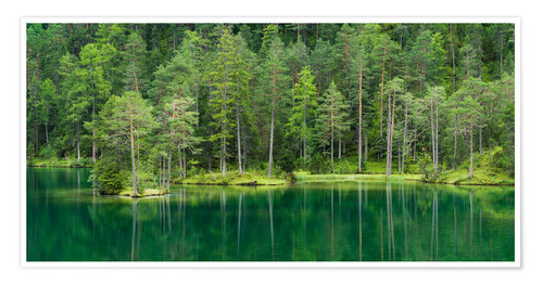 Poster Lac vert