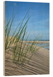 Tableau en bois  Dune grasses before playscape - Susanne Herppich