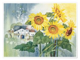 Poster  Rays of sun flowers - Franz Heigl